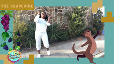 Inspired by 80's aerobic instructors from around the world  The Grapevine is a dance-a-long for children.