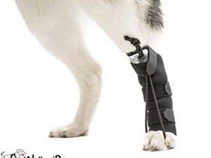 Walkin Rear No-Knuckling Training Sock S