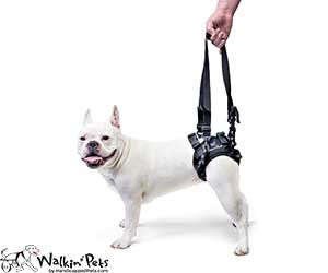 walkin-lift-rear-harness.jpg