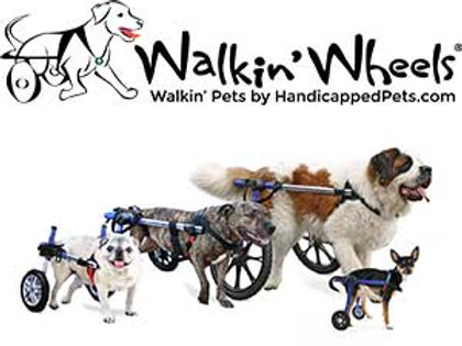 Handicapped Pet's Walkin Wheels Rear Wheelchair Frame Mini B2