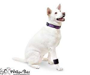 walkin-wrist-wrap.jpg
