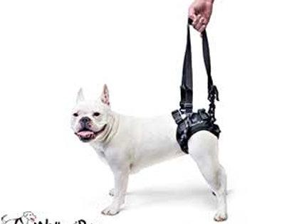 Walkin Rear-Lift Harness Med-Large/Large