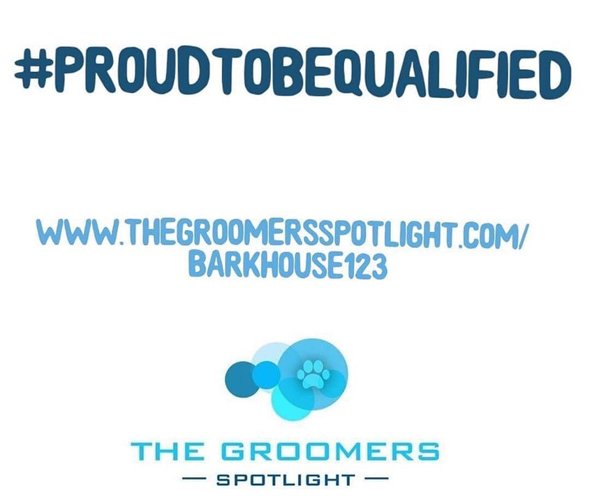 The Groomers Spotlight