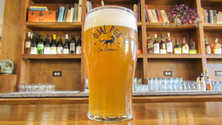 A pint of light beer in an Ojai Pub branded glass