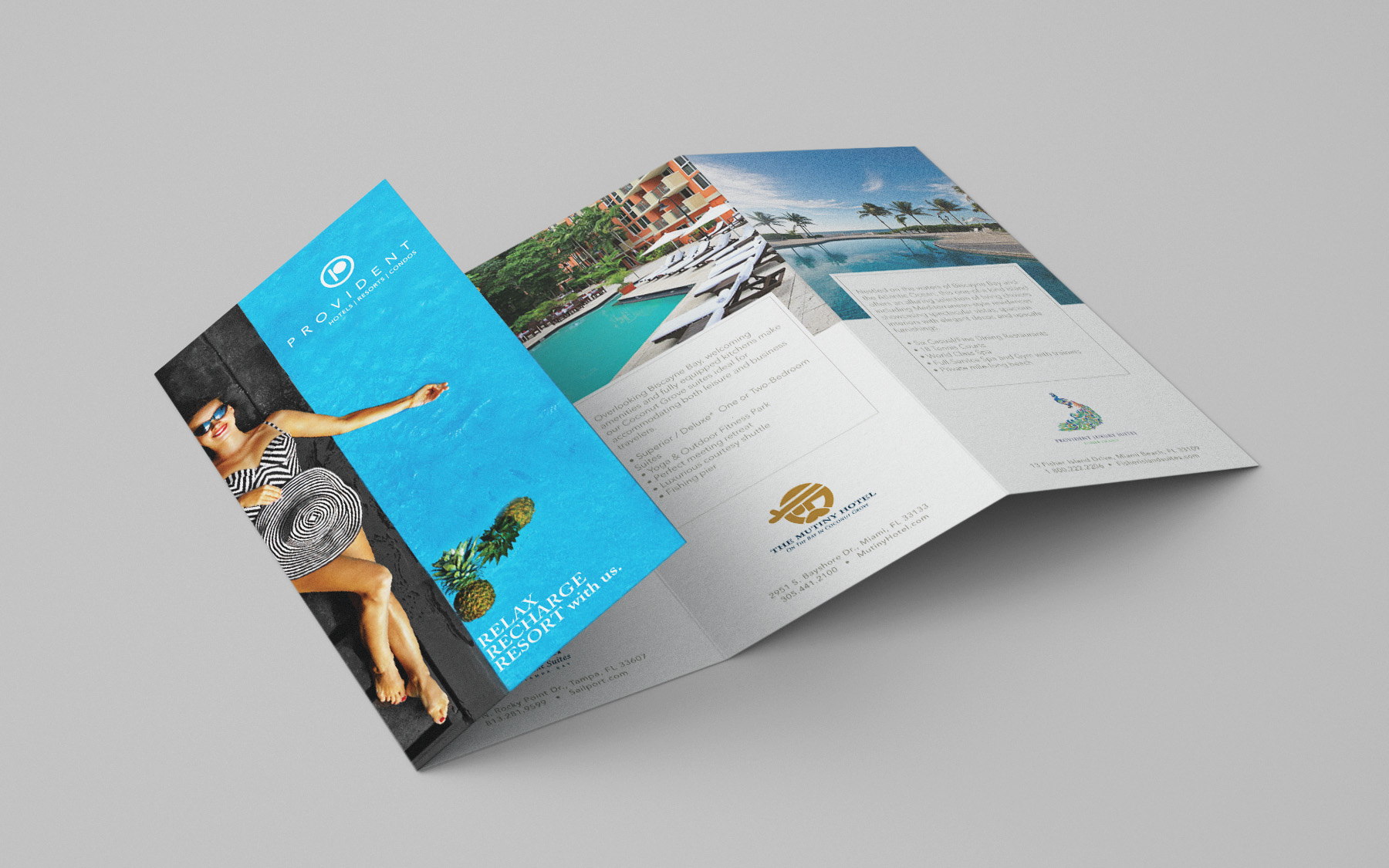 Provident 4 Fold Brochure for Trade