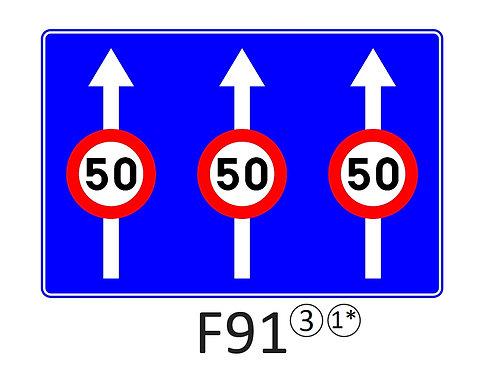 Verkeersbord F91 - klasse 3