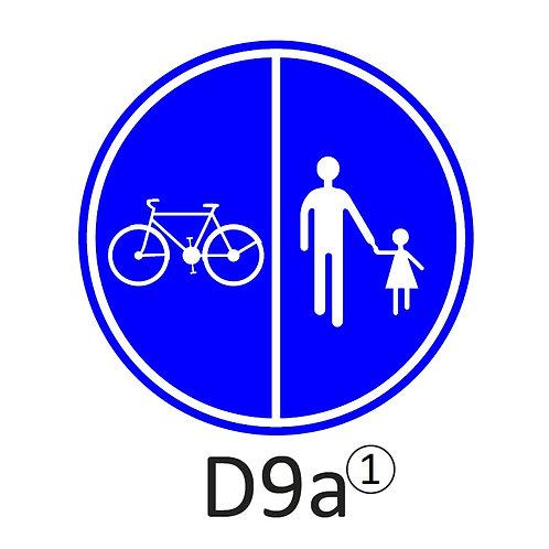 Verkeersbord D9 a, b - klasse 2