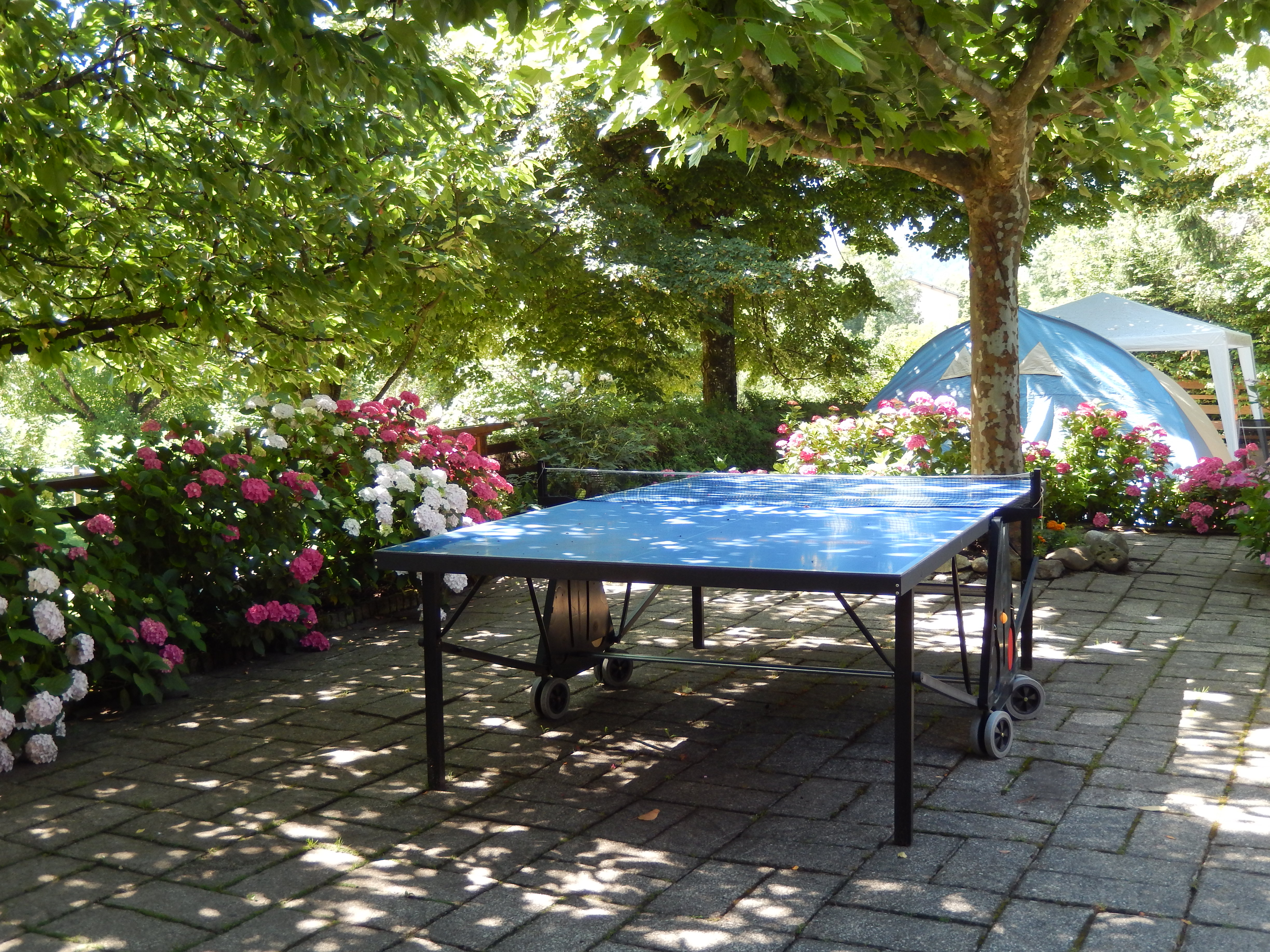 Camping le Taillefer Ping Pong