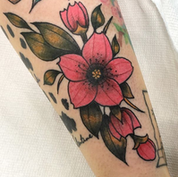 Color Florals by Jason