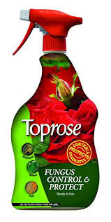 Toprose Fungus Control & Protect