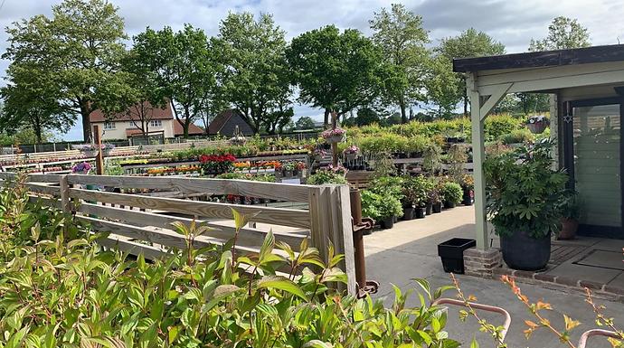 Bardfield Garden Centre
