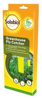 Solabiol Greenhouse Fly Catcher