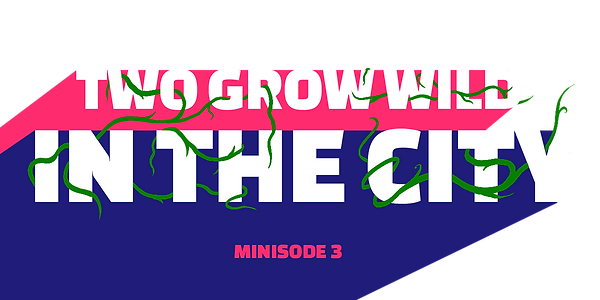 minisode_3_website_graphic.png