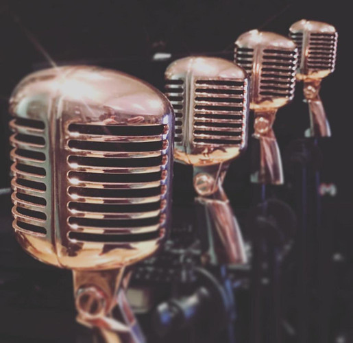 Micrófonos profesionales S55