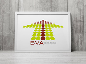 BVA consultores
