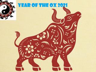 Year of the Yin Metal Ox 2021