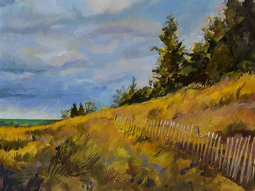 Arcadia Shore