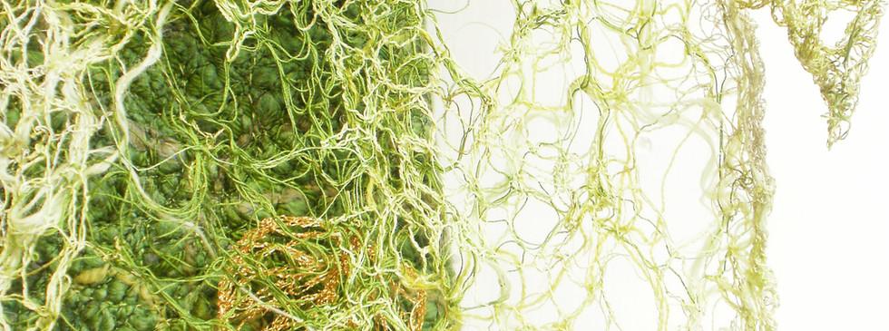 lichen & leaves