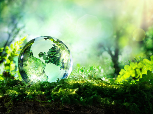 Tips for a Greener Procurement
