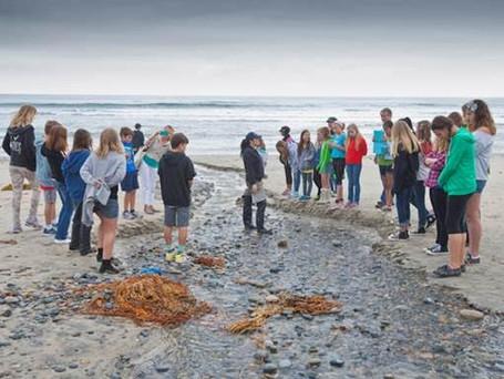 Seaside Stewards program