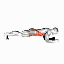 Plank.