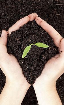 composting-2.jpg