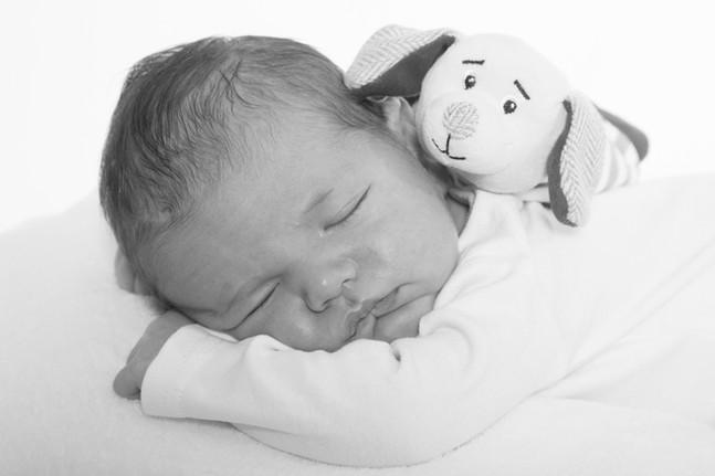 portrait de bébé Tours