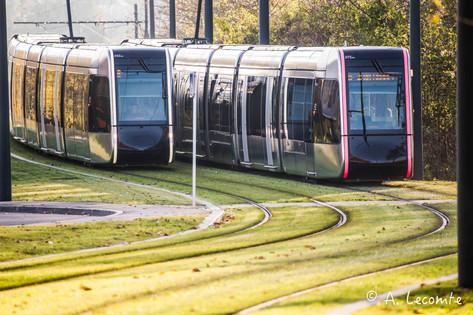 tram Tours