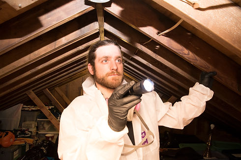 Mold Inspection Franchise Tallahassee.jpg