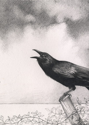 The Crows Farewell