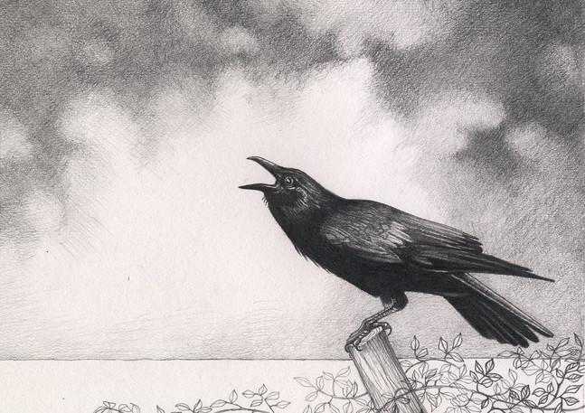 The Crows Farewll