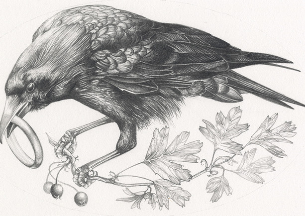 Crow with Ring
