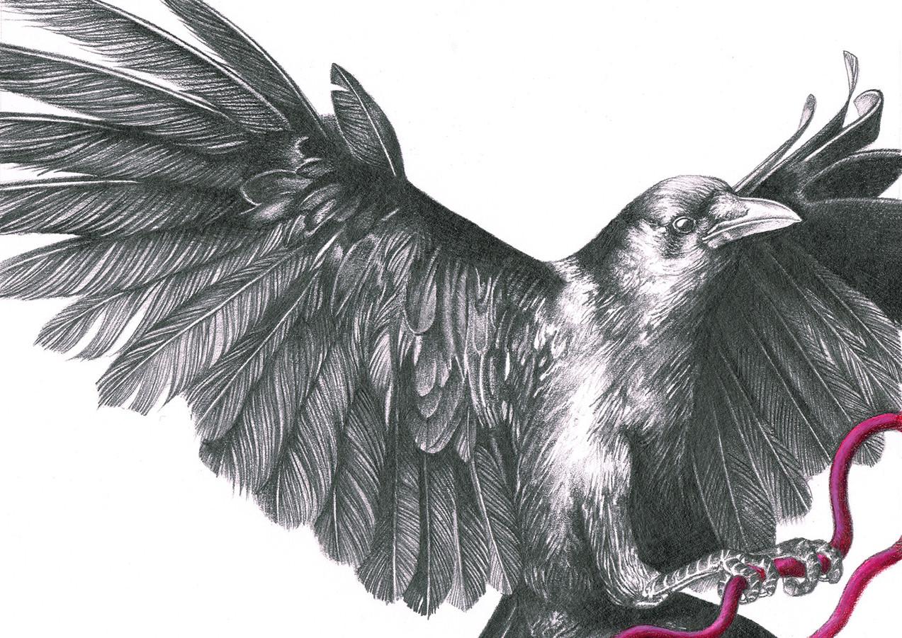 Crow World