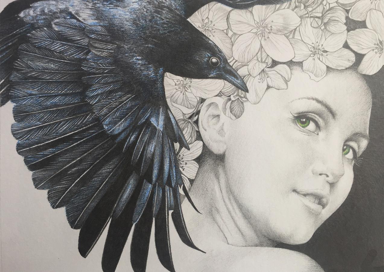 The Crow of my Dreams