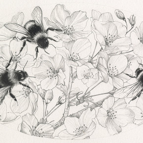 Blossom with bees
