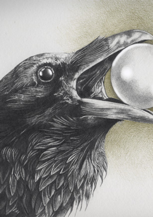 The Crow who eat the Moon