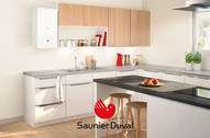 Saunier Duval ISOTWIN CONDENS F 25
