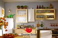 Saunier Duval THEMACLASSIC C25