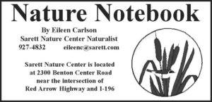 nature notes header