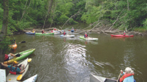 30 KAYAKERS... and canoeists navigate the first of many snags in the Paw Paw River between Watervliet and Coloma. (TCR photos by Karl Bayer)