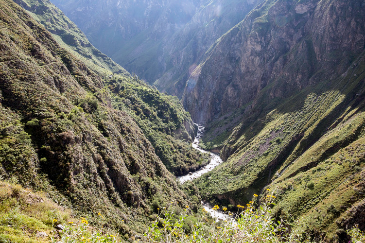 River at the bottom of the Colca Canyon