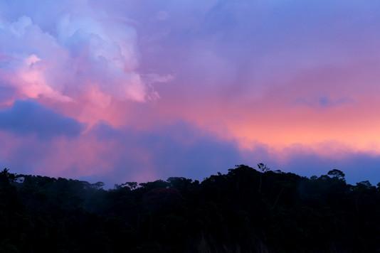Amazing sunrise Amazonia Peru Parque de Manu
