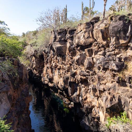 La faille de Las Grietas sur l'île de Santa Cruz aux Galapagos