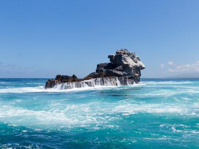 Les Galapagos - Isabela, une île sauvage et préservée du bout du monde
