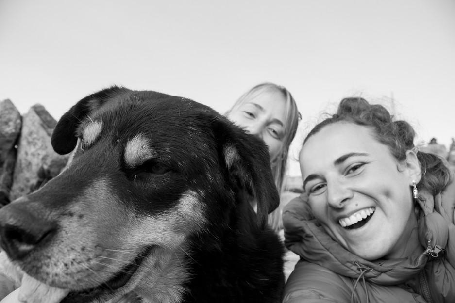 Rencontre avec un chien bolivien sur le mirador de Copacabana