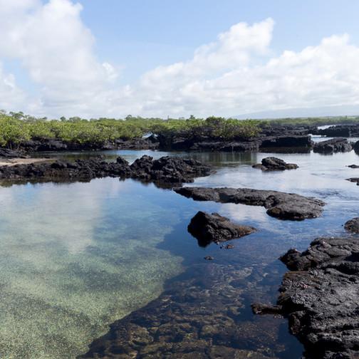 Los Tuneles de lave sur l'île d'Isabelle aux Galapagos