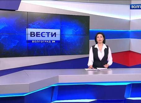Территорию СК «Зенит» украсили крымские сосны