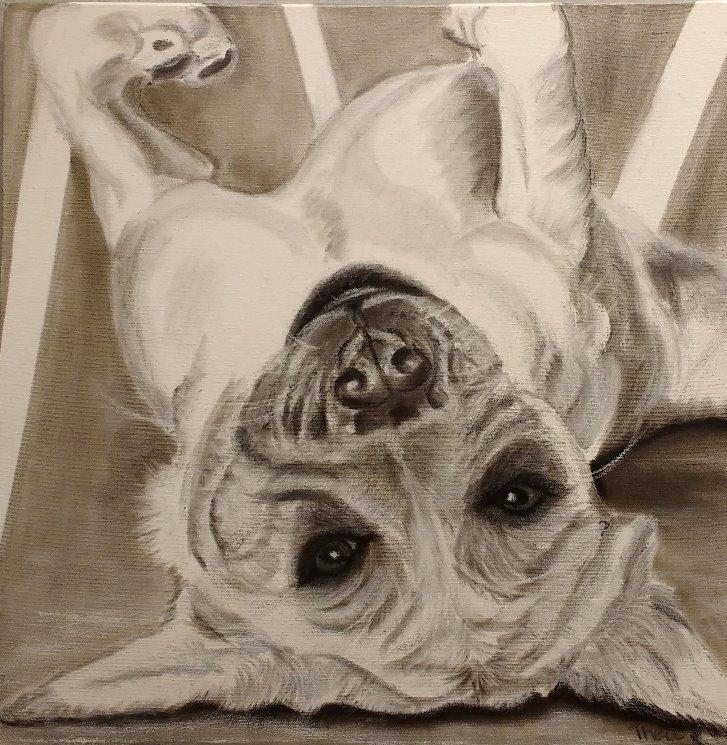 Hondje aan het luieren