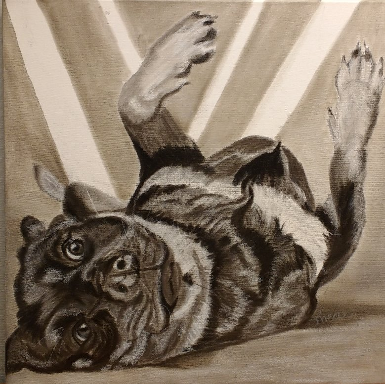 Spelend hondje