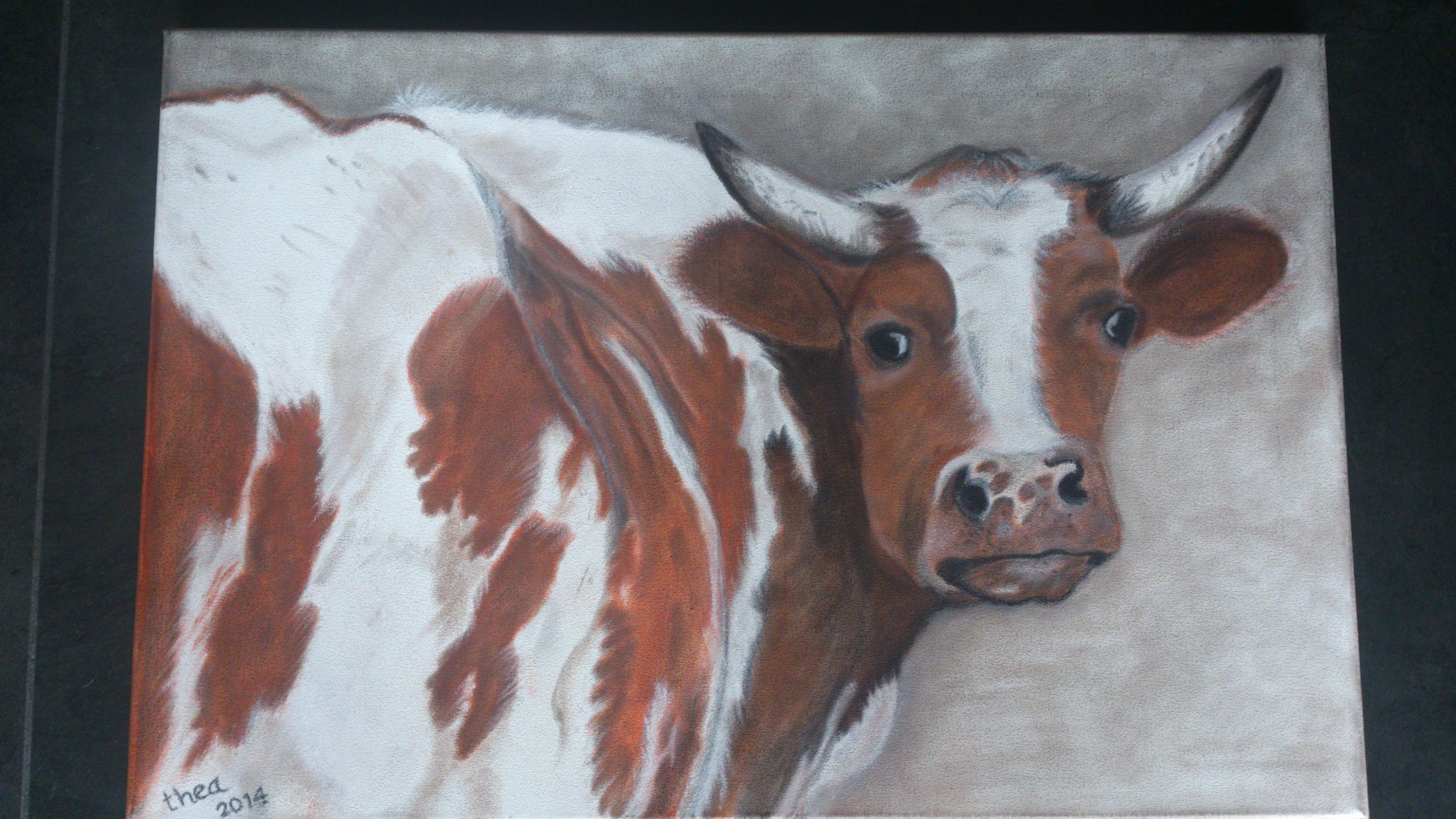 Roodbonte koe graast in Goenga